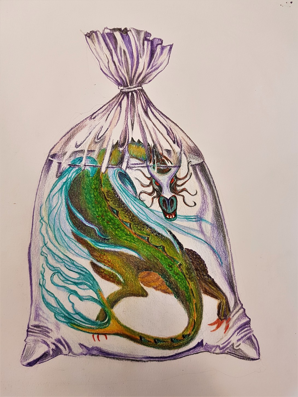 Dragon in Fish Bag